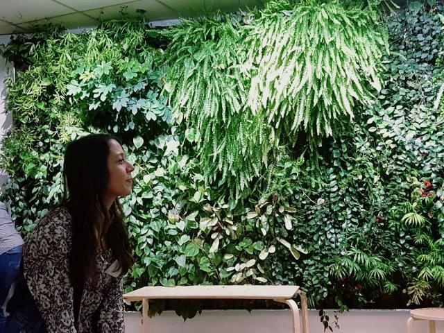 audrey_redac_mur_vegetal
